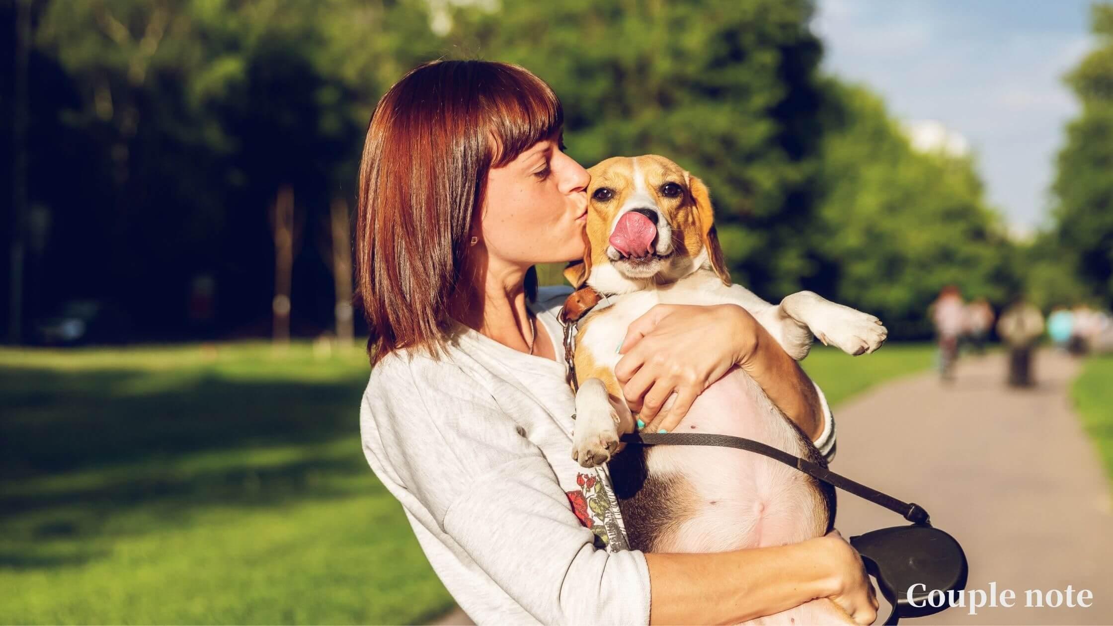 【犬を救う】早食い防止おすすめ食器7選【ランキング形式で紹介】