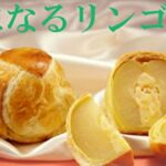 【評判&口コミ】気になるリンゴはまずい?賞味期限やカロリーまで徹底解説